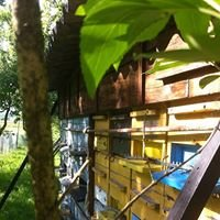 Pčelarstvo Grozdanić