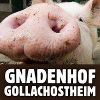 Gnadenhof Gollachostheim