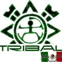 Tribal-SUP