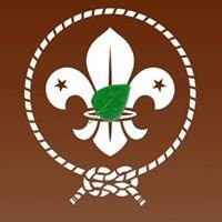 Grupo Scout Alamos 260