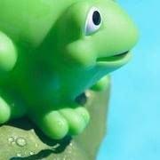 Bullfrog Swim School: Indoor Pool