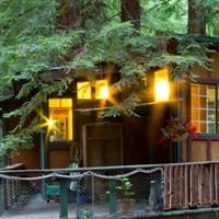 Redwood Treehouse Rental