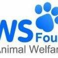 Phuket Animal Welfare Society (PAWS)
