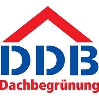 DDB Dachbegrünung