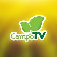 Portal CampoTV