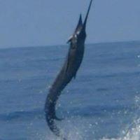 """Pro Sport Fishing Omega Huatulco""."