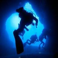 Duikcentrum D-diving