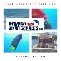 Diving Adventures Cozumel