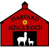 Harvard Alpaca Ranch