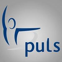 Puls Flisa