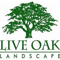 Live Oak Landscape