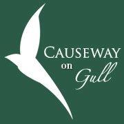 Causeway on Gull