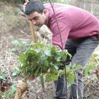 Jardinerie PLaisible.com