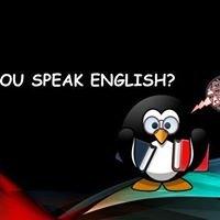 Merit International School of Languages