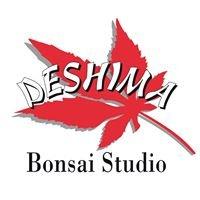 Bonsai Studio Deshima