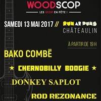 Festival Woodscop