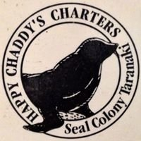 Chaddy's Charters