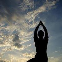Playa del Carmen Yoga & Fitness