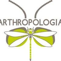 Association Arthropologia