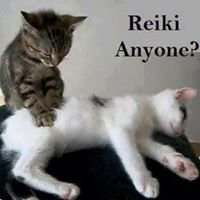 Reiki Connections