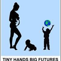Tiny Hands Big Futures
