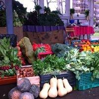 El Portal Orgánico. Delivery de Frutas y Verduras Organicas