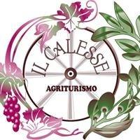Agriturismo Il Calesse
