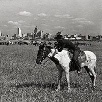 River Ranch-Texas Horse Park
