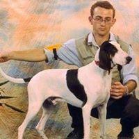 Dog's World Snc di Raimondi Davide & C