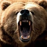 The Crazy Bear - Outdoor Pursuits - Multi Activity Days