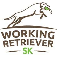 Working Retriever SK