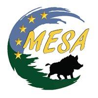 MESA-Marche