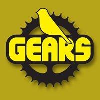 Gears Canary Bike Shop