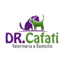 Veterinaria Cafati a Domicilio