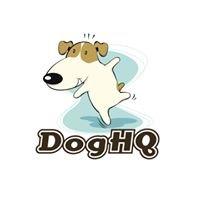 DogHQ
