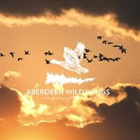 Aberdeen Wild Wings Sporting Adventures