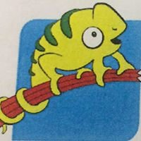 Leefschool Kameleon Menen