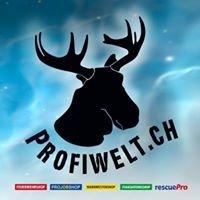Profiwelt.ch