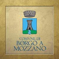 Comune di Borgo a Mozzano