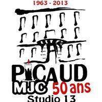M-j Culture Picaud