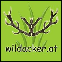 wildacker.at