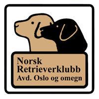 Norsk Retrieverklubb avd. Oslo og omegn