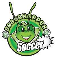 Grasshopper Soccer Illawarra