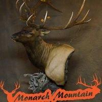 Monarch Mountain Taxidermy