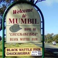 Mumbil's Blackwattle Fair