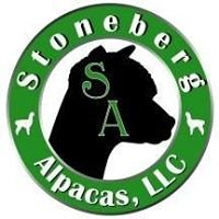 Stoneberg Alpacas