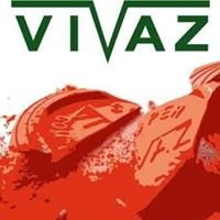 Vivaz Clay Targets