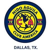 Nido Aguila USA Dallas