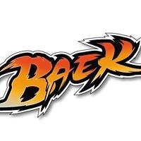 """Escuela """"baek"""""""