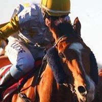 Carnarvon Race Club